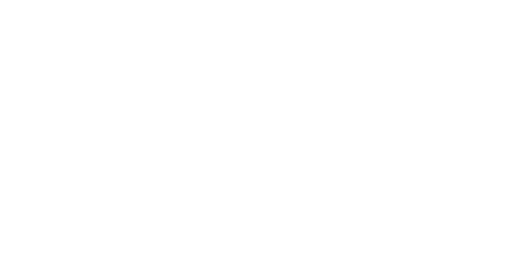Nava Ideas Logo